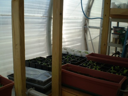 MDRS: Greenhouse